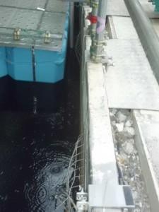Правителството на Япония иска да ускори изваждането на ядреното гориво от басейните за отлежаване на фукушимските блокове