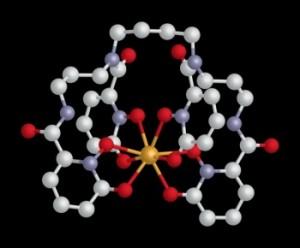 Нов препарат за извличане на опасните актиноиди от организма