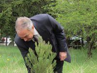 БАН – ИЯИЯЕ – Зелена инициатива