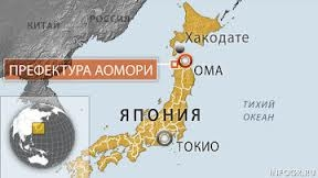 Япония търси алтернативи на ядрената енергетика