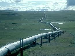 Полша може да отложи строителството на АЕЦ заради добива на шистов газ