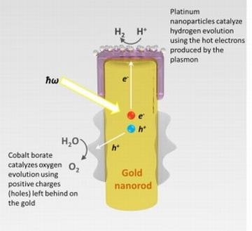 Златни нано-пръчки ще позволят директното преобразуване на слънчевата светлина в енергия