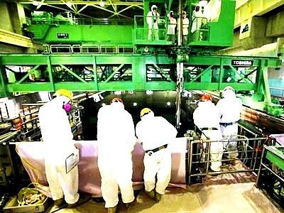 """Япония – АЕЦ """"Фукушима-1"""" – на втори блок отново върлуват плъхове"""