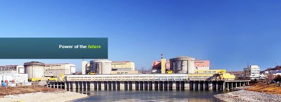 Правителството на Румъния е одобрило условията за продажба на акции на Nuclearelectrica SA