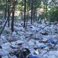 В САЩ е открита технология за добиване на нефт от отпадъчни найлонови торбички