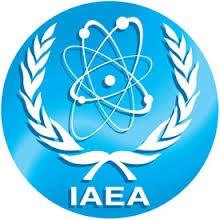 МААЕ: въпросът за използване на американското ядрено гориво на украинските АЕЦ изисква щателна оценка
