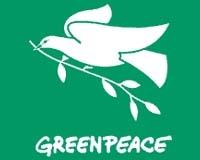Даренията в сметките на Greenpeace се стопиха с 3,8 милиона евро поради грешни предвиждания на борсата