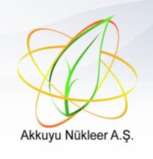 """Турската АЕЦ """"Аккую"""" ще има по-надеждни системи за безопасност от НВАЕЦ, по образец на която се изгражда"""
