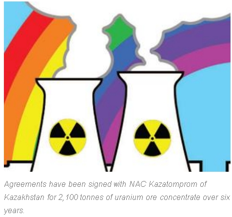 Индия получи около 3968 тона ядрено гориво от международни доставчици