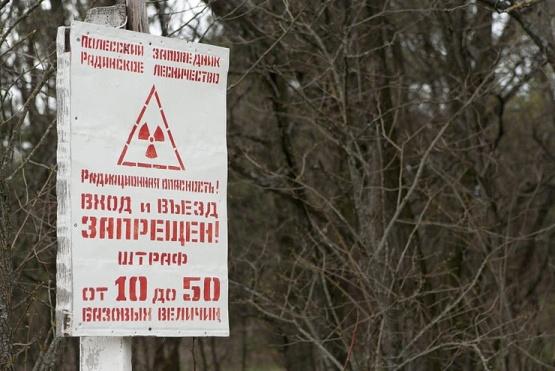 Беларус ще отдели около 2 милиарда долара за ликвидиране на последствията от аварията (ЛПА) на Чернобилската АЕЦ