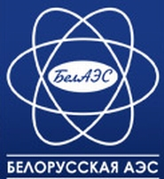 Осем лицензирани специалисти от НАЭК Энергоатом са отишли на работа в Беларус