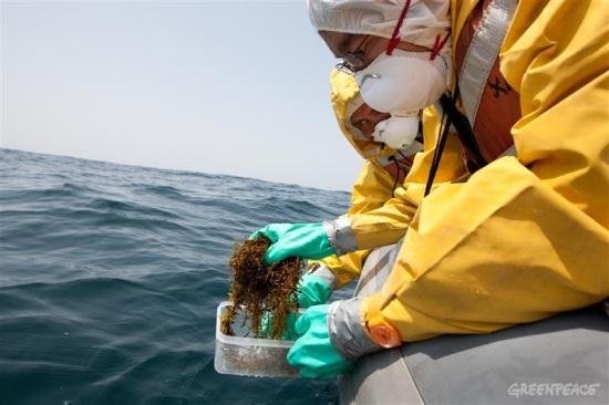 Япония – Радиоактивното замърсяване на водата в морето е 5 пъти над нормата