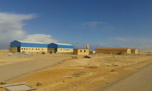 Египетски компании ще извършат около 20 % от строителните дейности на първата АЕЦ в страната