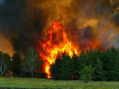 """В района на японската АЕЦ """"Фукушима-1"""" е възникнал пожар"""