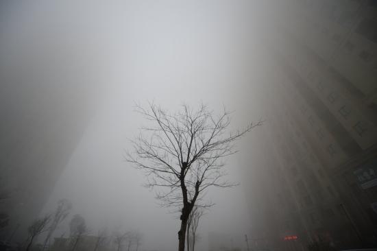 Назад към въглищата. До какво ще доведе отказът на САЩ от намаляване емисиите на парникови газове?