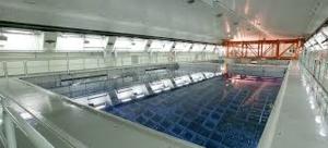 Франция – EDF търси нова площадка за изграждане на централизирано мокро хранилище за ОЯГ