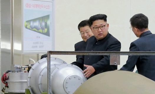 Япония ще отдели на МААЕ 2,8 милиона долара за проверка на ядрените обекти на КНДР