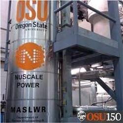 До 2027 година американската NuScale планира да изгради 12 малки модулни реактора