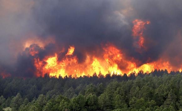 Димът от горските пожари може да бъде по-опасен от радиацията.