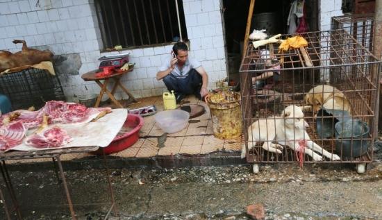 Ще се върне ли коронавирусът в Китай?