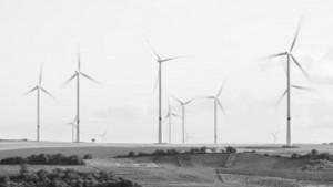 Производството на вятърна и слънчева енергия в САЩ се увеличава с 16%. ВЕИ са по-ефективени от ядрената и въглищната енергетика
