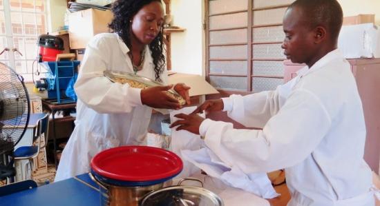 Проекти на МААЕ в селското стопанство – От контрацепцията за мухи до управлението на сушата