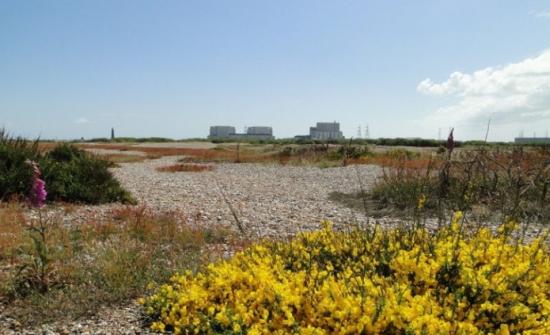 Атомната електроцентрала Dungeness B в Англия ще бъде закрита седем години предсрочно