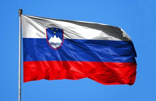 """Правителството на Словения издаде разрешение за проектиране на втори блок на АЕЦ """"Кръшко"""""""